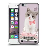 OFFICIAL STUDIO PETS CLASSIC Kitten Hard Back Case for Apple iPhone 6 / 6s (9_F_1DF5A)