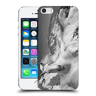 OFFICIAL THOMAS BARBEY ANIMALS Icy Studs Hard Back Case for Apple iPhone 5 / 5s / SE (9_D_1A3DE)