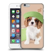 OFFICIAL STUDIO PETS CLASSIC Holly Day Hard Back Case for Apple iPhone 6 Plus / 6s Plus (9_10_1DF57)