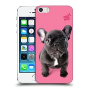 OFFICIAL STUDIO PETS CLASSIC Frenchie Hard Back Case for Apple iPhone 5 / 5s / SE (9_D_1DF56)