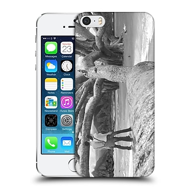 OFFICIAL THOMAS BARBEY LOVE Nut Tree Hard Back Case for Apple iPhone 5 / 5s / SE (9_D_1A402)