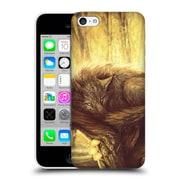 OFFICIAL EXILEDEN CANINE Lingering Lights Hard Back Case for Apple iPhone 5c (9_E_1C839)