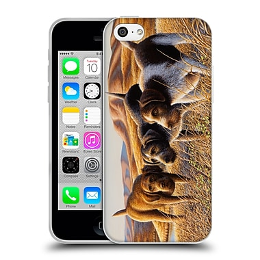 Official CHUCK BLACK WILDLIFE AND ANIMALS The Perfect Trio Soft Gel Case for Apple iPhone 5c (C_E_1AE94)