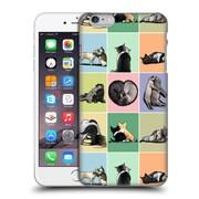 OFFICIAL TUMMEOW CATS 4 Love Story Hard Back Case for Apple iPhone 6 Plus / 6s Plus (9_10_1E486)