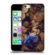 OFFICIAL SELINA FENECH FAIRIES Autumn Slumber Hard Back Case for Apple iPhone 5c (9_E_1A1EB)
