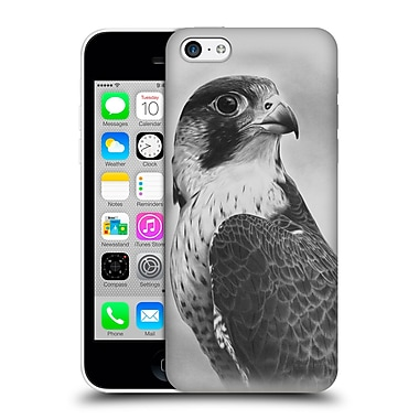 OFFICIAL GRAHAM BRADSHAW ILLUSTRATIONS Peregrine Falcon Hard Back Case for Apple iPhone 5c (9_E_1A8B0)