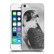 OFFICIAL GRAHAM BRADSHAW ILLUSTRATIONS Peregrine Falcon Hard Back Case for Apple iPhone 5 / 5s / SE (9_D_1A8B0)