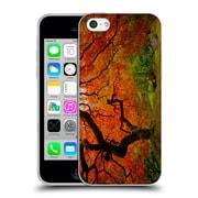 Official DARREN WHITE FALL COLOURS Aspen Morning Soft Gel Case for Apple iPhone 5c