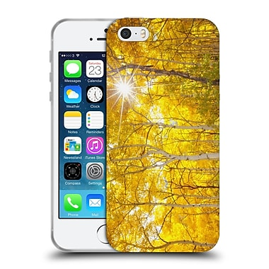 Official DARREN WHITE FALL COLOURS Tree Fire Soft Gel Case for Apple iPhone 5 / 5s / SE
