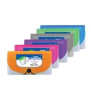 Bulk Buys Bazic 13-Pocket Check Size Poly Expanding File Case Of 12 (DLRDY252618)