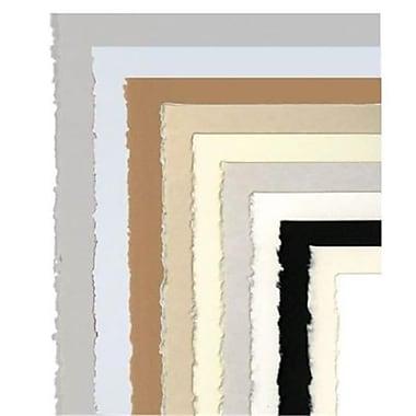 Legion Paper 22 in. x 30 in. Warm White Versatile Artist Paper - Case of 100 (ALV35558)