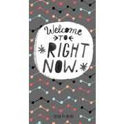 Tf Publishing 2018 Welcome 2 Yr Pocket Planner (18-7244)