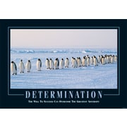 "SECO®  Stewart Superior ""Determination"" Framed Motivational Poster, 29"" x 21.5"", Black Frame (MPI001)"