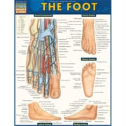 BarCharts The Foot by Vincent Perez (BARCH467)
