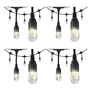 4 Pack Enbrighten 31660 Cafe Led Lights (12ft; 6 Acrylic Bulbs)