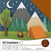 "American Crafts AC376989 American Crafts Variety Cardstock Pack 12""X12"" 60/Pkg-Earthtones"
