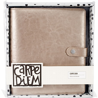 Simple Stories SSCDA5-4935 Carpe Diem A5 Planner-Platinum