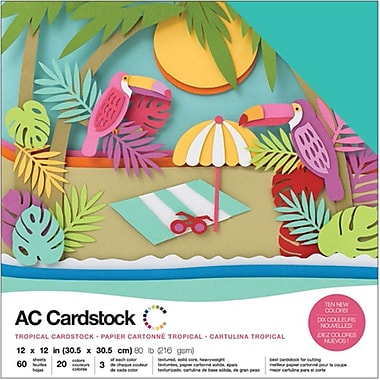 American Crafts AC376991 American Crafts Variety Cardstock Pack 12