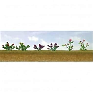 SP Whistle Stop Flower Plants Assortment 1 - Pack of 12 (STVN2459)