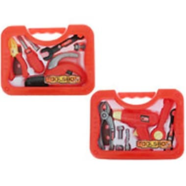 DDI Tool Set with Carry Case - 2 Assorted (DLR339542)