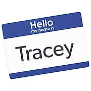 """Avery """"Hello"""" Name Badge Labels, 2-1/3"""" x 3-3/8"""", White w/ Blue Border, 100/Pack (5141)"""