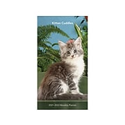 "2021-2022 BrownTrout 3.5"" x 6.5"" Planner, Kitten Cuddles, Clear (9781975419752)"