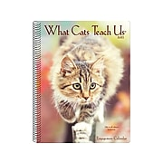 """2021 Willow Creek 7"""" x 8.66"""" Planner, What Cats Teach Us, Multicolor (14615)"""