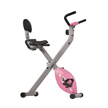 Sunny Health & Fitness Magnetic Folding Recumbent Bike Exercise Bike, 220lb Capacity (SF-RB1117),Size: large