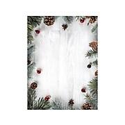 Geographics Greenery on Wood Seasonal Letterhead, Multicolor, 40/Pack (49183)