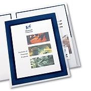 Avery Flexi-View 2-Pocket Presentation Folders, Navy Blue/Translucent, 2/Pack (47846)