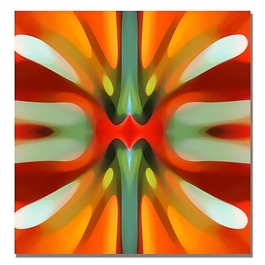 Trademark Fine Art Amy Vangsgard 'Tree Light Symmetry Red' Canvas