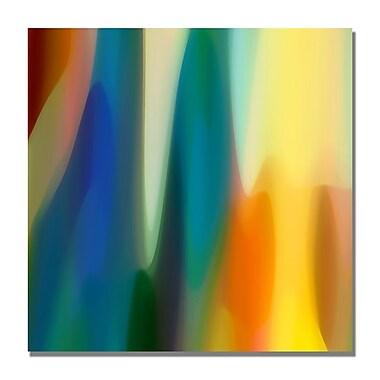 Trademark Fine Art Amy Vangsgard 'Color Fury VI' Canvas Art