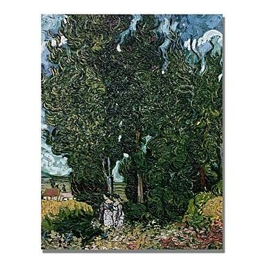 Trademark Fine Art Vincent Van Gogh 'The Cypresses' Canvas Art