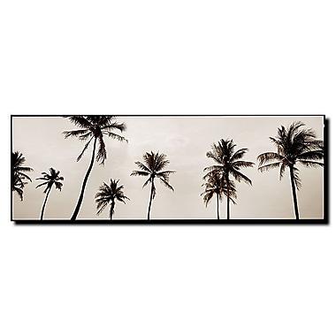 Trademark Fine Art Black & White Palms by Preston-Ready to Hang Art