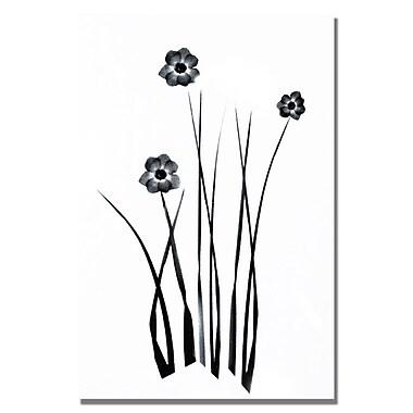 Trademark Fine Art Kathie McCurdy 'White and Black Bunch' Canvas Art