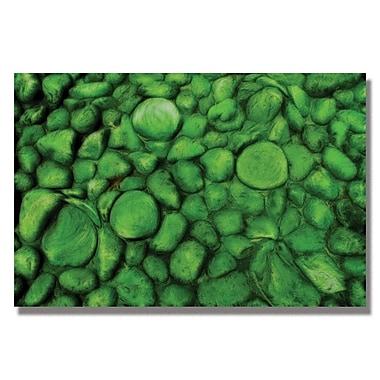 Trademark Fine Art Kathie McCurdy 'Green River Rocks' Canvas Art