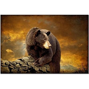 Trademark Fine Art Lois Bryan 'The Bear' Canvas Art Ready to Hang