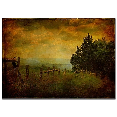 Trademark Fine Art Lois Bryan 'View from the Top' Canvas Art