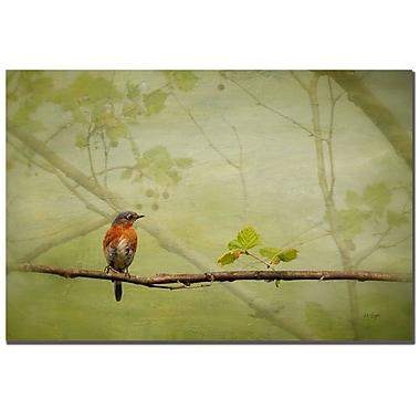 Trademark Fine Art Lois Bryan 'Bluebird in Spring' Canvas Art