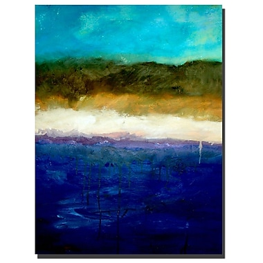 Trademark Fine Art Abstract Dunes Study by Michelle Calkins-Ready to Hang