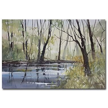Trademark Fine Art Ryan Radke 'Pine River Reflections' Canvas Art