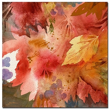 Trademark Fine Art Sheila Golden 'Autumn's Shadows' Canvas Art
