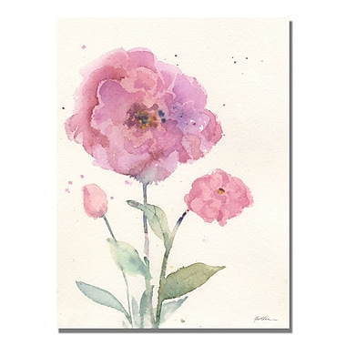Trademark Fine Art Sheila Golden 'Camelia Blush' Canvas Art
