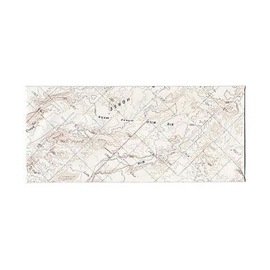 JAM PaperMD – Enveloppes pour cartes avec fermetures gommées, 4 1/8 x 9 1/2 po, imprimé carte
