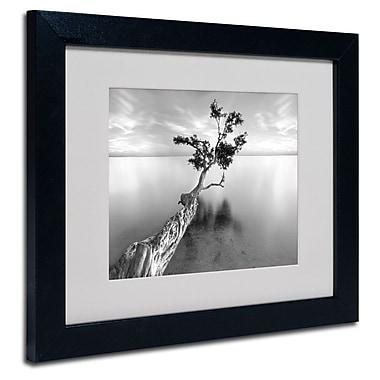 Trademark Fine Art 'Water Tree XIII'