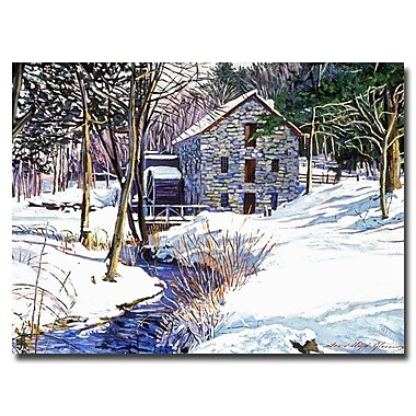 Trademark Fine Art 'Snow Mill'