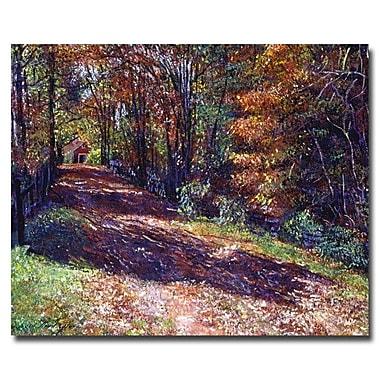 Trademark Fine Art 'Old Farmhouse Road'