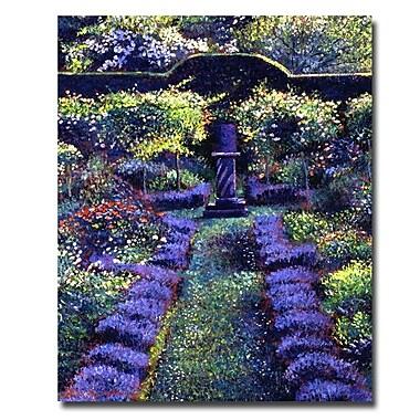 Trademark Fine Art 'Blue Garden Sunset'