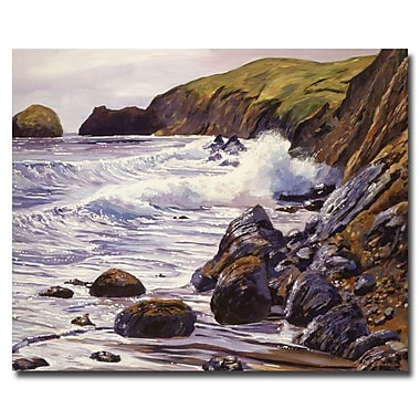 Trademark Fine Art 'Summer Sea'