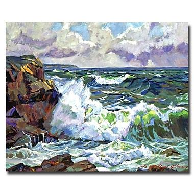Trademark Fine Art 'Malibu Coastline'
